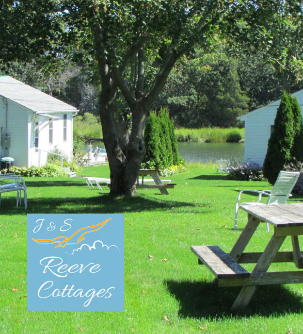 Cozy Waterfront Vacation Rental Cottage 6 Backyard View